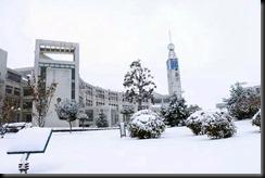 1511 山東省初雪 (15)