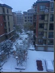 1511 山東省初雪 (18)