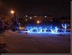 1511 山東省初雪 (24)