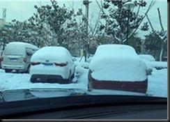 1511 山東省初雪 (3)
